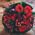 Růže mix